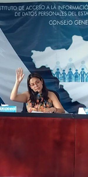 La doble tarea de las mujeres que ocupan cargos públicos: Marlene Alonso
