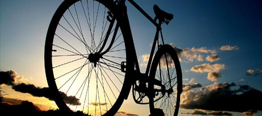 Habrá 2da Edición de Paseo Ciclista Nocturno con avistamiento de Luciérnagas