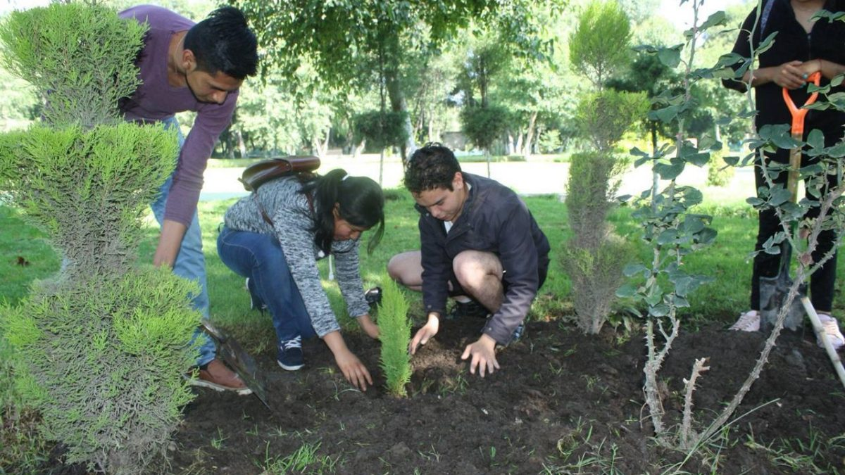 Con #ZacatelcoConsciente se plantarán más de 5 mil árboles