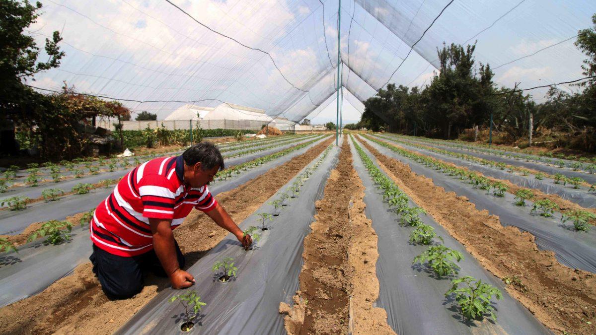 Manipulan acta de hechos del Consejo Estatal de Desarrollo Rural Sustentable