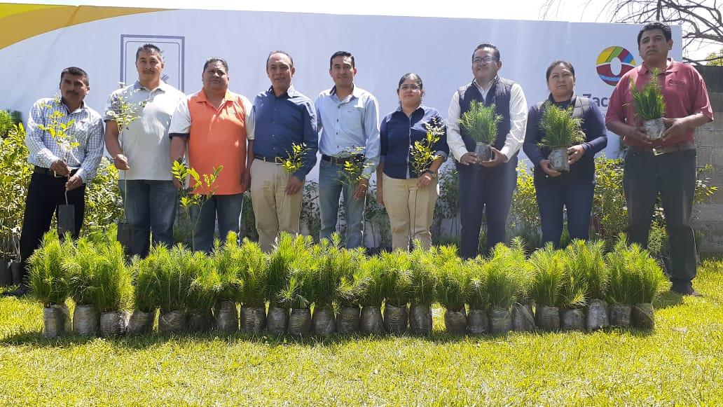 Con motivo del Día del Árbol, se entregan árboles en zona turística Los Ladrillos