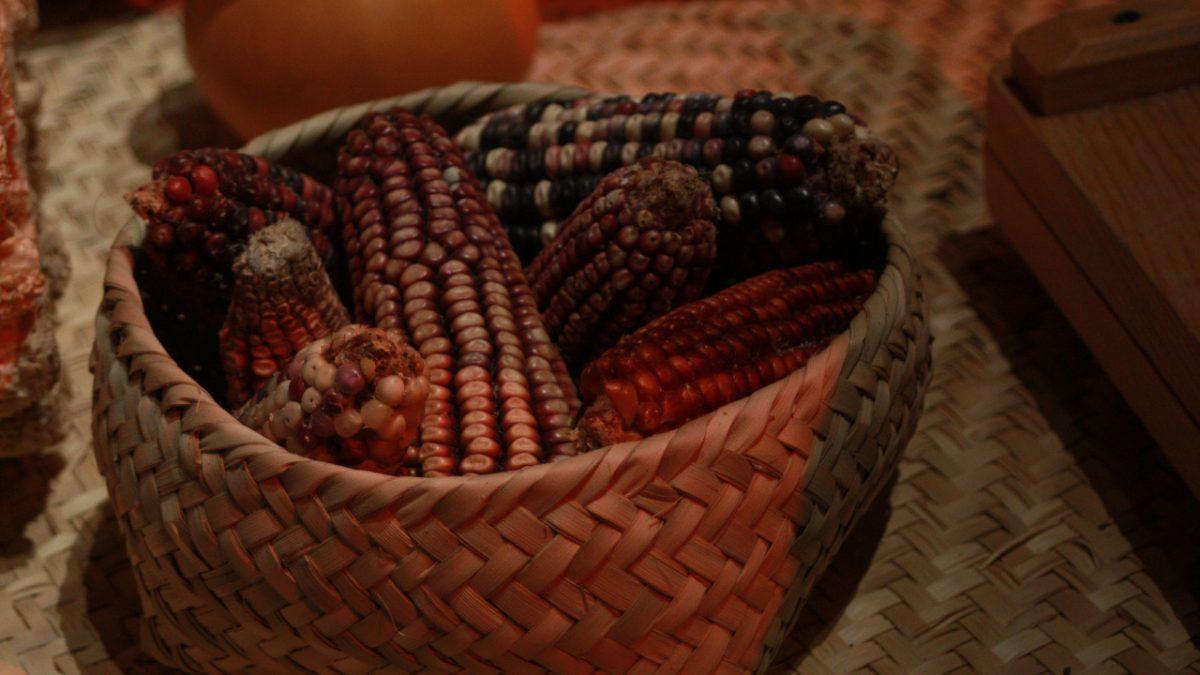 """Tlaxcala """"Lugar de pan y Maíz"""", entre los Estados que menos maíz produce"""