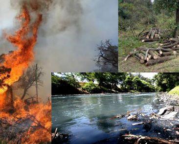 Incendios-Tala-Árboles-Contaminación-Ríos-Tlaxcala-Covid