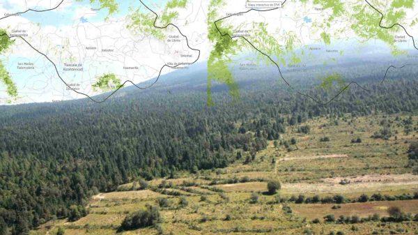 se-acaba-el-bosque-de-la-malintzi-entre-puebla-y-tlaxcala-gfw-escenario