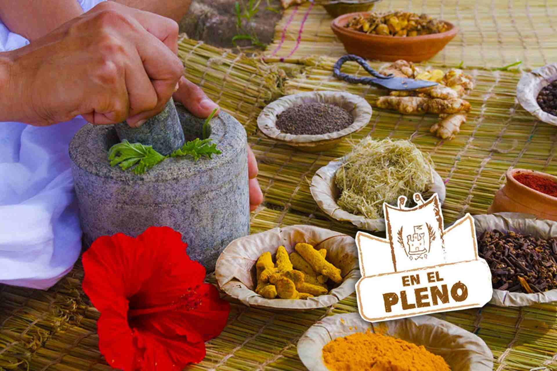 medicina-tradicional-mexico-escenario-congreso-Tlaxcala.