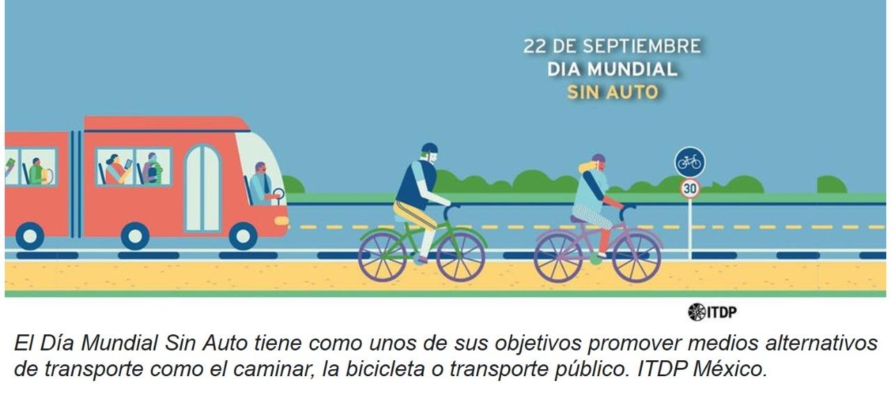 Auto-Sulus-Creatividad en política pública-Tlaxcala-Movilidad