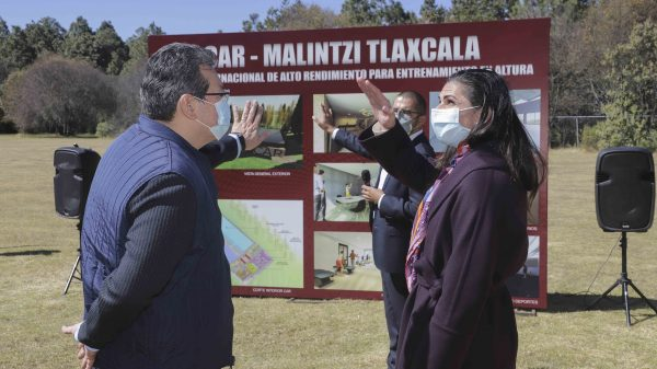 malinche-centro-entrenamiento-tlaxcala-hongo-descortezador