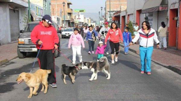 Chiautempan y Apetatitlán-Sacrificio de animales