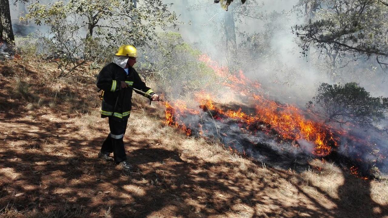 incendios-sintesis-tlaxcala-conafor.
