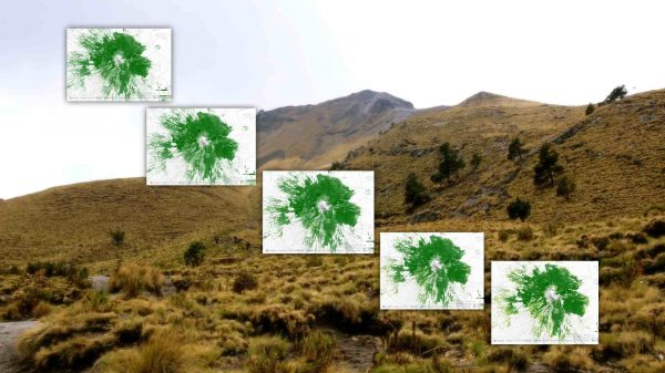 deforestación-Malinche-estacion-científica-Tlaxcala-Uatx.