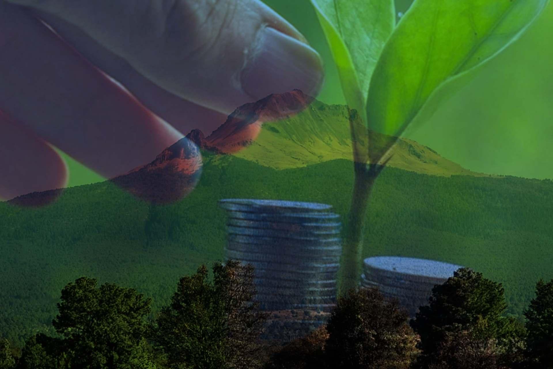 bonos-verdes-malinche-Tlaxcala-reforestación-liderazgo-joven-rafa-salas