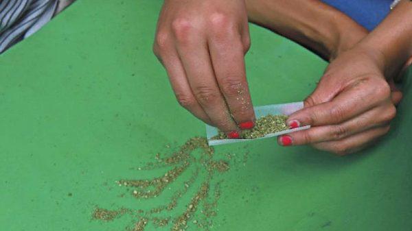 cannabis-Tlaxcala-mujeres cannábicas-género-consumo-drogas-Tlaxcala-feminismo