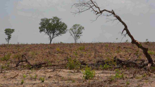 tierra-día de la tierra-Tlaxcala-Atoyac-Zahuapan-Centro Fray Julián Garcés-Derechos Humanos-Desarrollo local
