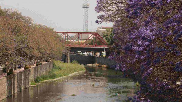 Zahuapan-Tlaxcala-AMUT-Asociación Mexicana de Urbanistas Tlaxcala-Movilidad