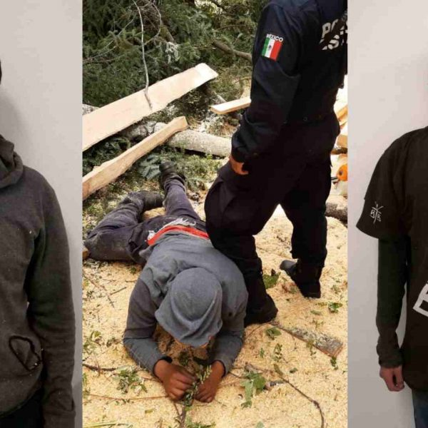 tala ilegal-La Malinche-Tlaxcala