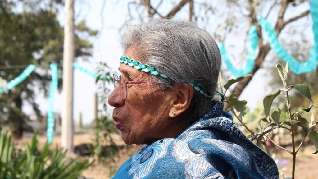 Tlaxcala-Medicina tradicional-Curanderas-Tetla